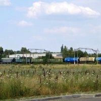 Поезд в степи :: Татьяна Смоляниченко