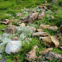 Камни Севера :: Яша Баранов