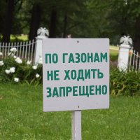 По газонам ходить обязательно :: Михаил Лесин