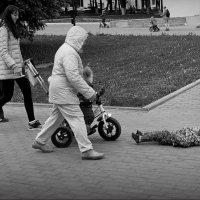 Стоп - дальше я поеду ! :: Владимир Шошин