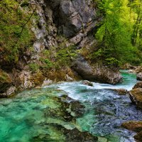 Река Радовна в ущелье Винтгар :: slavado