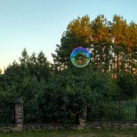 Пузырьки :: Марина Ворошко (Митьковец)