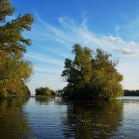Летом на речке :: Анна Васильева (Anna-82V)
