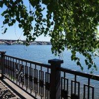 На Набережной Енисея :: Лариса Рогова