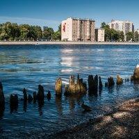 Санкт-Петербург. Набережная реки Большая Невка. :: Елена Кириллова
