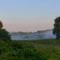 Туманное утро Августа :: Татьяна Лобанова