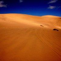 Пустыня Намиб. :: Jakob Gardok
