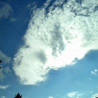 Облако-комета. :: - Ivolga