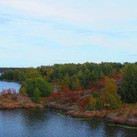 Берег острова в  Балтике :: Татьяна