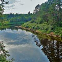 Тихая гладь Кабожи реки... :: Sergey Gordoff