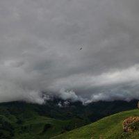 Как будто в буре есть покой :: Денис Богомолов