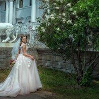 Невеста Александра :: Ирина Жулина