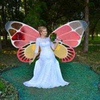 Бабочка Кристина. :: Светлана Бурлина
