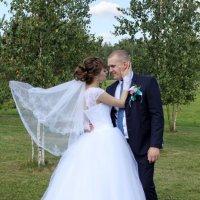 Свадьба Владимира и Елены :: Светлана Краснова