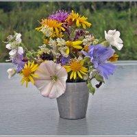 Полевых цветов букетик :: muh5257