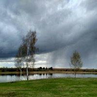 Над озером..Апрель :: Марина Ворошко (Митьковец)