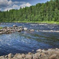 Река Шуя-Карелия :: Юрий Яньков
