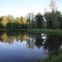 Верхний Ламский пруд :: Наталья Герасимова