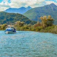 На Скадарском озере :: Сергей Цветков