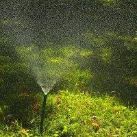 Искусственный дождик :: Светлана