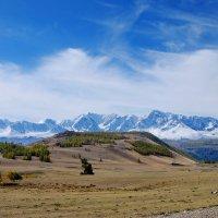 Северо-Чуйский хребет :: nataly-teplyakov