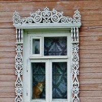 На окошке сидит кошка . :: Святец Вячеслав