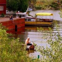 Ловись рыбка и мала и велика , :: Мила Бовкун