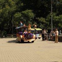 В парке. :: sav-al-v Савченко