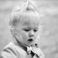 Девочка впервые увидела ящерицу: - «Мама, мама, маленький Змей Горыныч порвался!» :: Глeб ПЛATOВ