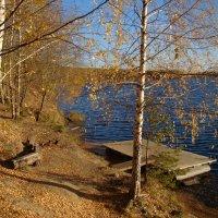 Осыпав золото листвы, стоят берёзки у воды... :: Татьяна Георгиевна
