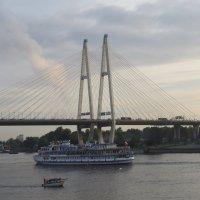 Большой Обуховский мост :: Вера Щукина