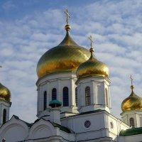 Золотые купола. :: Лариса Авдонина