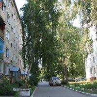 У нашего дома :: Олег Афанасьевич Сергеев