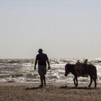 Закончился пляжный сезон :: Олег