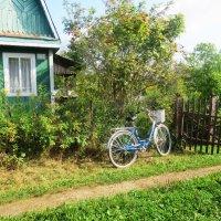 Велосипед :: Лариса