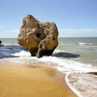 Сердце моря :: Юлия Новикова