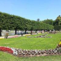 Прогулка по парку Кадриорг :: veera (veerra)