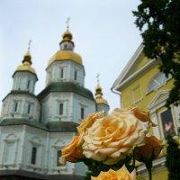 Покровский и розы :: Ирина
