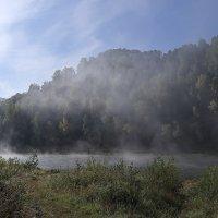 туман2 :: Павел Савин