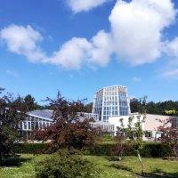 Таллинский Ботанический сад, оранжереи :: veera (veerra)