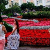 Фотосессия в Александровском саду :: alek48s