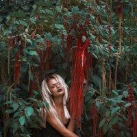 Осень :: Оксана Циферова