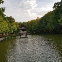 ЕСЕНТУКИ. Городское озеро :: Tata Wolf
