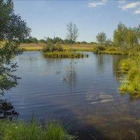на безымянном озере :: Дмитрий Анцыферов