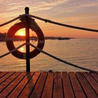 Солнце-наш спасительный круг :: Сергей