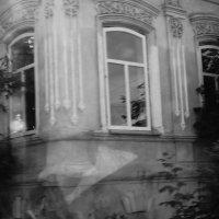 Windows :: Елена Елена