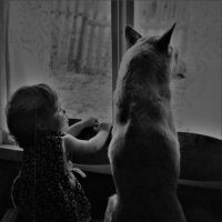 Мои любимые)) :: Лариса Красноперова