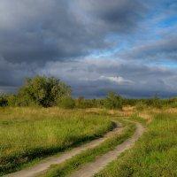 Эх дороги... :: Олег Кулябин