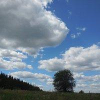 Поймаю облака руками :: Надежда