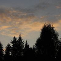 Небо :: Sergei Medvedev